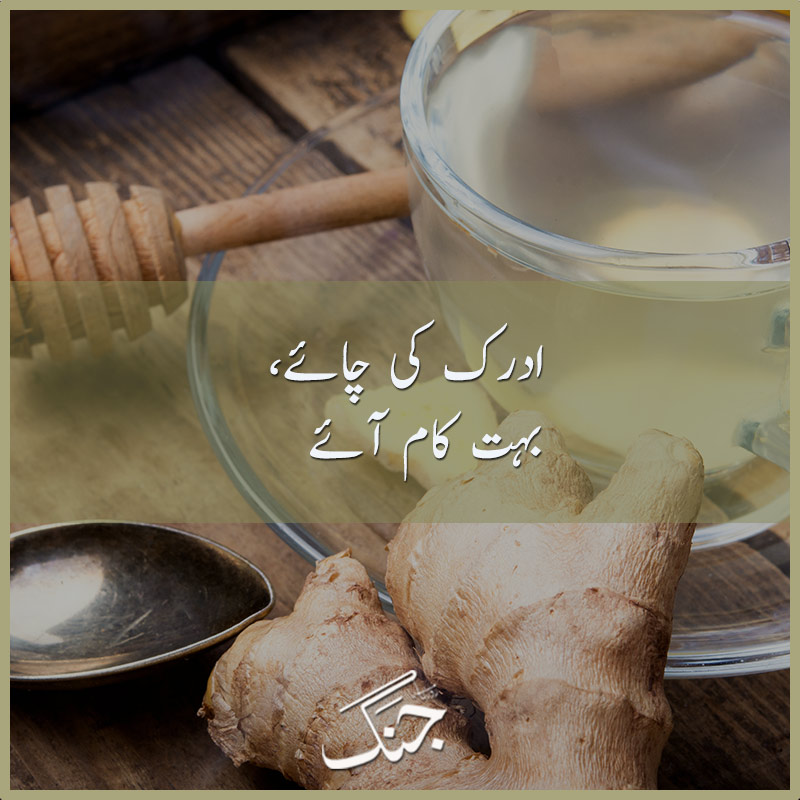 4 Amazing benefits of Ginger (Adrak) Tea