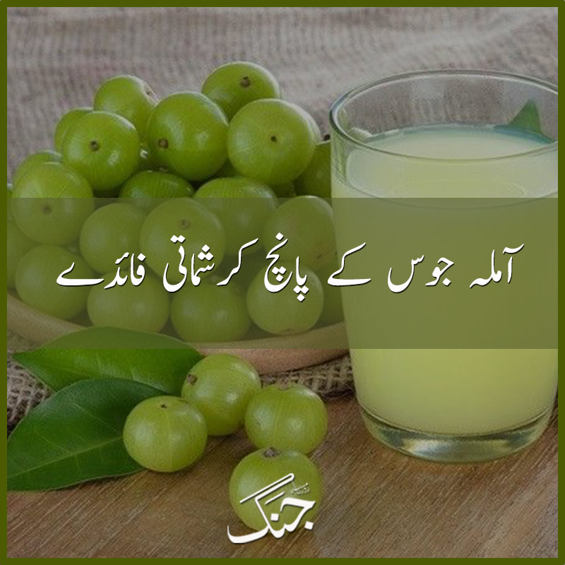 5 Magical Benefits of Indian Gooseberry (Amla)