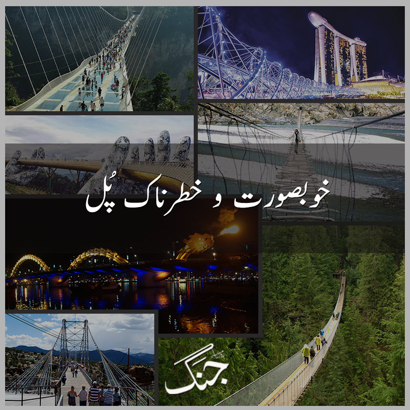 6 Unique Bridges