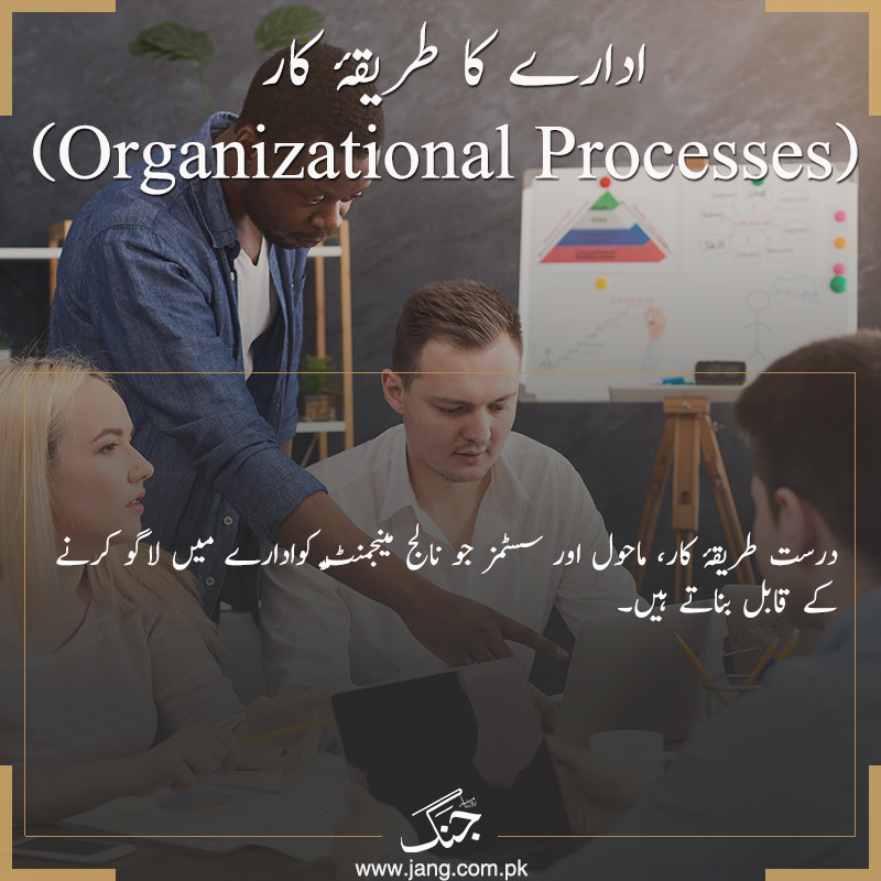 Implement Standard Operating Procedures (SOPs)