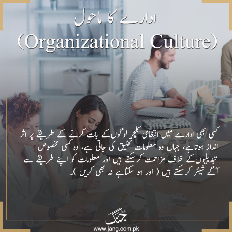 develop organizational culture