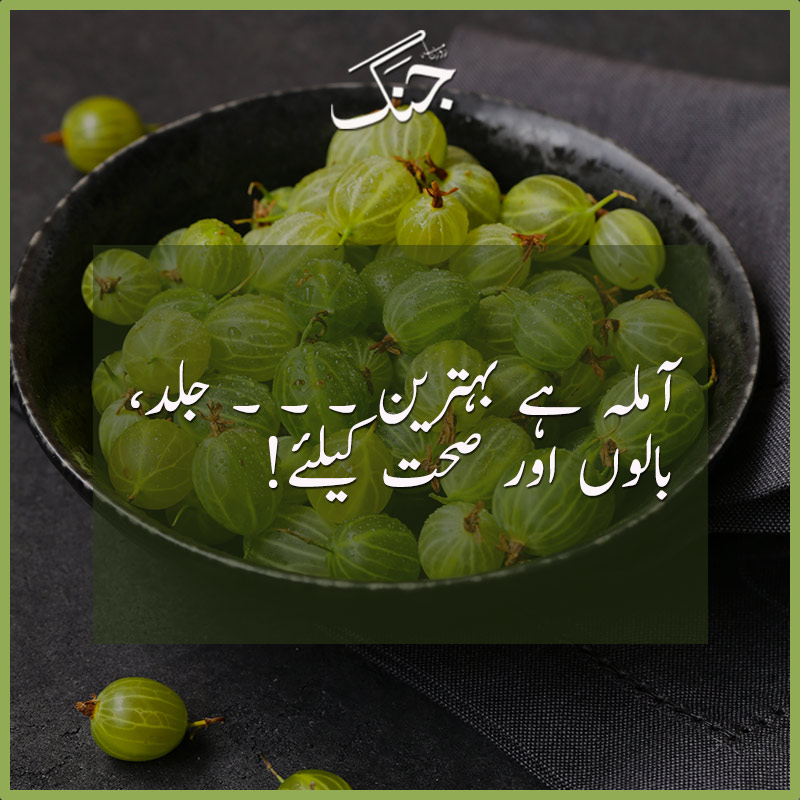 Amazing benefits of amla gooseberry