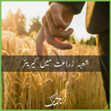 career in agricultural studies