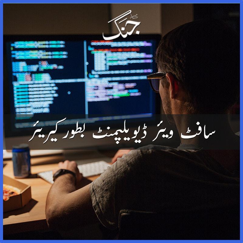 software development as a career