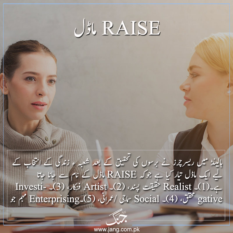 RAISE model in career counselling