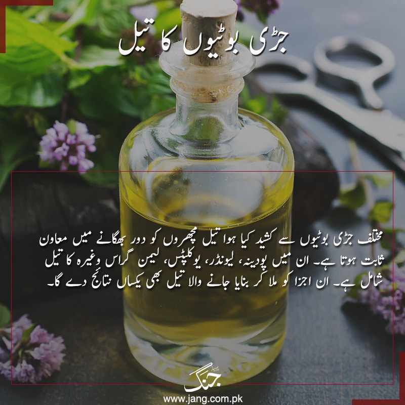 Use herbal oil to get rid of mosquitoes