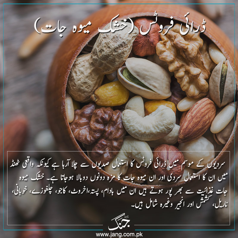 dry fruits foods for winter