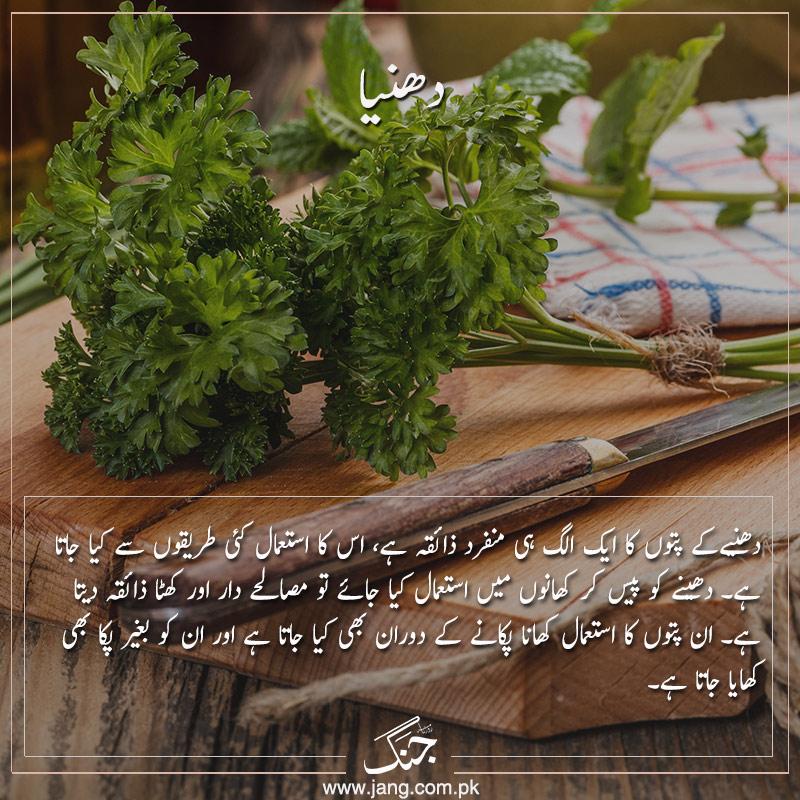 parsley alternatives to salt