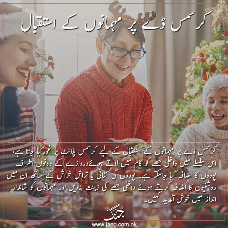 invite your family and friend for dinner to celebrate christmas