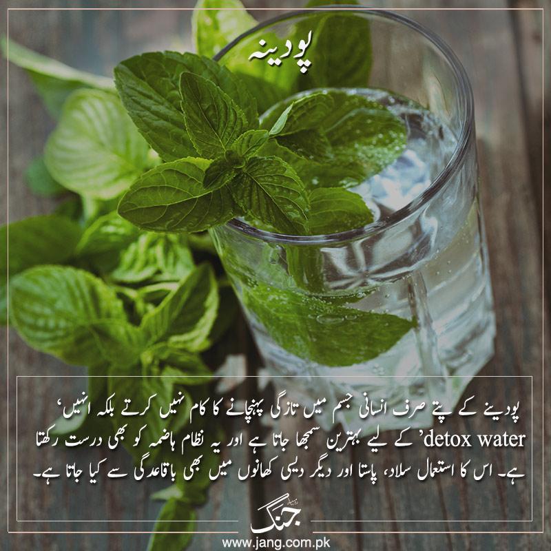 mint alternatives to salt