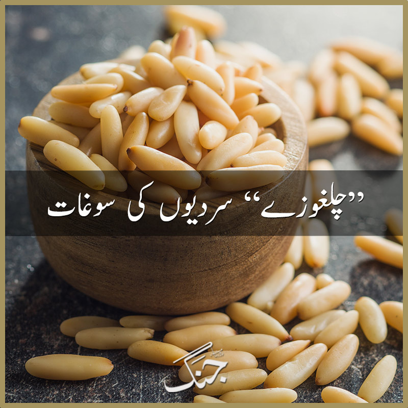 4 incredible benefits of pine nuts