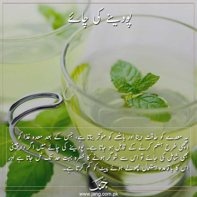 mint tea can boost your metabolism