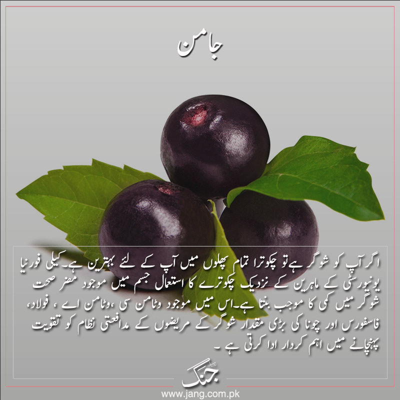 jamun black plum for diabetes patients