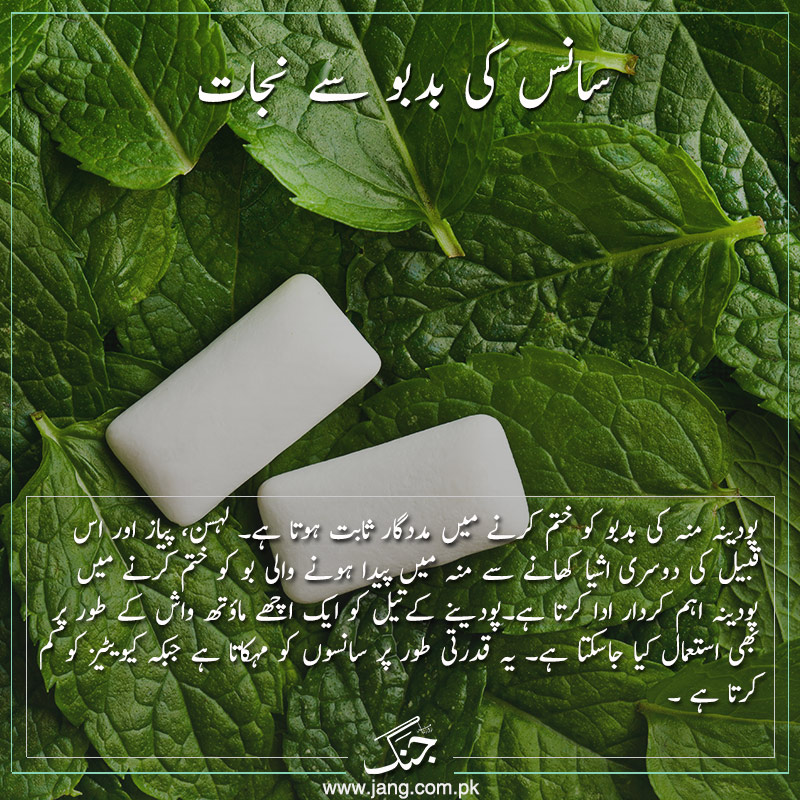 refresh your breath with mint