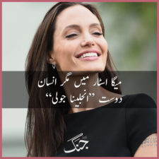 Angelina Jolie Charity Work, Events and Causes