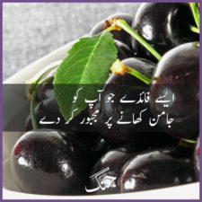 Amazing Health Benefits and Uses of Jamun Fruit (Black Plum)