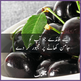 Amazing Health Benefits and Uses of Jamun Fruit (Black Plum)